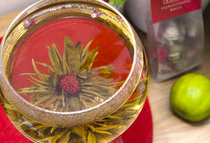 Секретный чай цветка Стоковые Изображения