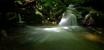 Секретный шотландский водопад Стоковая Фотография