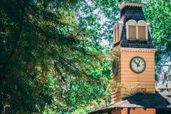 Секреты леса башни с часами стоковая фотография