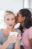 Секрет милой женщины шепча к ее другу Стоковые Изображения
