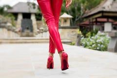 Сексуальная женщина идя в красные брюки и красные пятки стоковые изображения rf