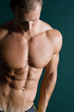 сексуальное строителя тела мышечное стоковые фотографии rf