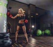 Сексуальный модельный представлять в воюя клубе Стоковое фото RF