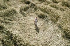 Сексуальная женщина с белым, голубым платьем идет через поле рож Стоковое Изображение RF