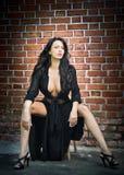 Сексуальная шикарная моло Стоковая Фотография