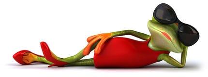 Сексуальная лягушка Стоковое Изображение RF