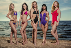 Сексуальные дамы на пляже Стоковые Фотографии RF