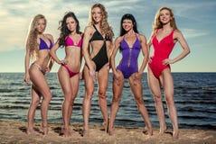 Сексуальные дамы на пляже Стоковое Фото