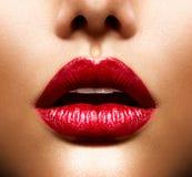 Сексуальные губы Стоковая Фотография