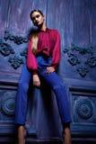 Сексуальный стиль моды партии дела собрания костюма платья женщины Стоковые Изображения RF