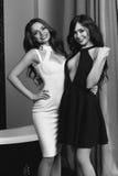 2 сексуальных девушки нося платье Стоковое фото RF