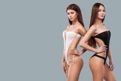2 сексуальных женщины брюнет нося черно-белый swimwear представляя на предпосылке цвета тело совершенное Лето бикини Стоковые Фотографии RF