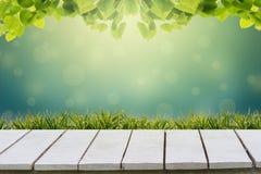 селективная зеленого цвета фокуса предпосылки естественная Зеленая предпосылка имеет лист и траву bokeh на белом деревянном поле стоковое изображение