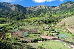 село Кералы стоковые изображения