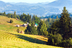 село лета горы ландшафта сельской местности Стоковая Фотография