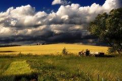 село лета Стоковое фото RF
