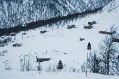 село Норвегии оленей здания национальное стоковые фотографии rf