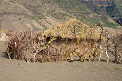 село Танзании maasai дома Стоковое Изображение RF
