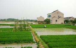 село фермы Стоковое фото RF