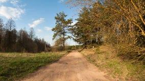 Сельская грязная улица вдоль леса Стоковое Фото