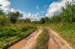 Сельская грязная улица с пакостными лужицами после дождя Стоковая Фотография