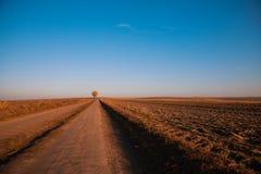 Сельская дорога с деревом на горизонте Стоковое Фото