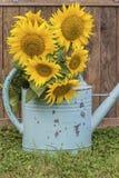 Сельская жизнь стиля лета с солнцецветами Стоковая Фотография RF