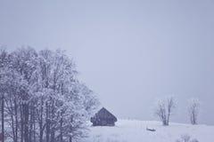 сельская зима пейзажа Стоковое фото RF