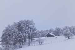 сельская зима пейзажа Стоковые Изображения RF