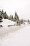 сельская зима Стоковая Фотография