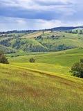 сельская местность Австралии buchan Стоковая Фотография