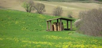 Сельская местность весны стоковая фотография rf