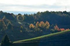 Сельская местность в южной Сербии стоковые изображения rf