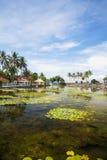 сельская местность Индонесия candidasa bali стоковое изображение rf