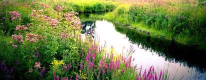 сельская местность красотки Стоковая Фотография