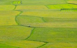 Сельская местность крася 1 Стоковые Фотографии RF