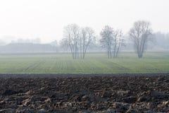 сельская местность мглистая Стоковая Фотография