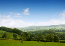 сельская местность мечтает ваше Стоковые Изображения