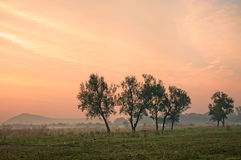 сельская местность над валами захода солнца Стоковое Фото