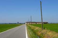Сельская местность около верчелли, Италии, на лете стоковая фотография rf