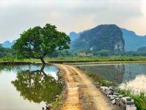 Сельская местность Tam Coc стоковое фото