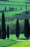 сельская местность tuscan Стоковая Фотография