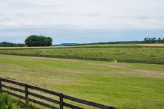Сельская обрабатываемая земля York County Пенсильвании страны, на летний день стоковая фотография rf