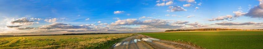 Сельская панорама ландшафта осени с дорогой, полем и голубым небом Стоковое Фото