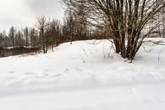 Сельская снежная дорога с сугробами на обочине, ветвями дерева покрытыми с крышками снега Стоковые Изображения
