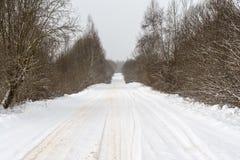 Сельская снежная дорога с сугробами на обочине, ветвями дерева покрытыми с крышками снега Стоковая Фотография RF