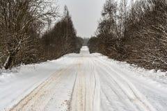 Сельская снежная дорога с сугробами на обочине, ветвями дерева покрытыми с крышками снега Стоковое Изображение