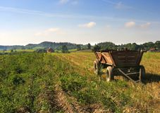 сельская фура Стоковое фото RF