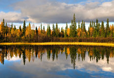 сельская Швеция Стоковая Фотография RF