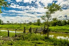 Сельские мосты Стоковые Фото